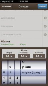 dnevnik_diety_4